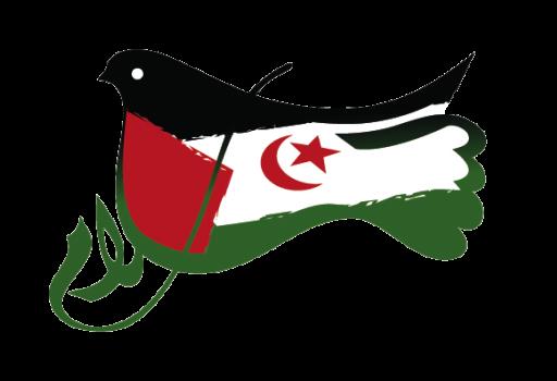 مجلس الأمة يشارك في فعاليات الندوة الـ 43 للتنسيقية الأوروبية للجان التضامن مع الشعب الصحراوي